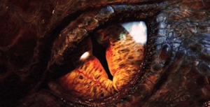 smaug-eye-feature